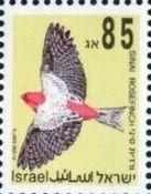 NEW BIRDS (85)-MINT-SINGLE