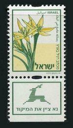 Gagea Flower SHEET OF 50