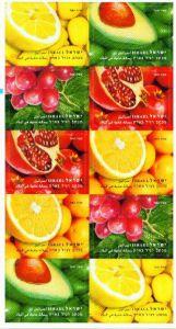 FRUITS-BOOKLET (10)