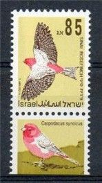NEW BIRDS (85)-TAB